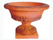 М016 Цветочница римская